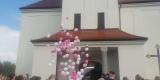 Mega Prezent Pudło balonów, Balony LED, balony na sale & fotobudka., Rybnik - zdjęcie 5