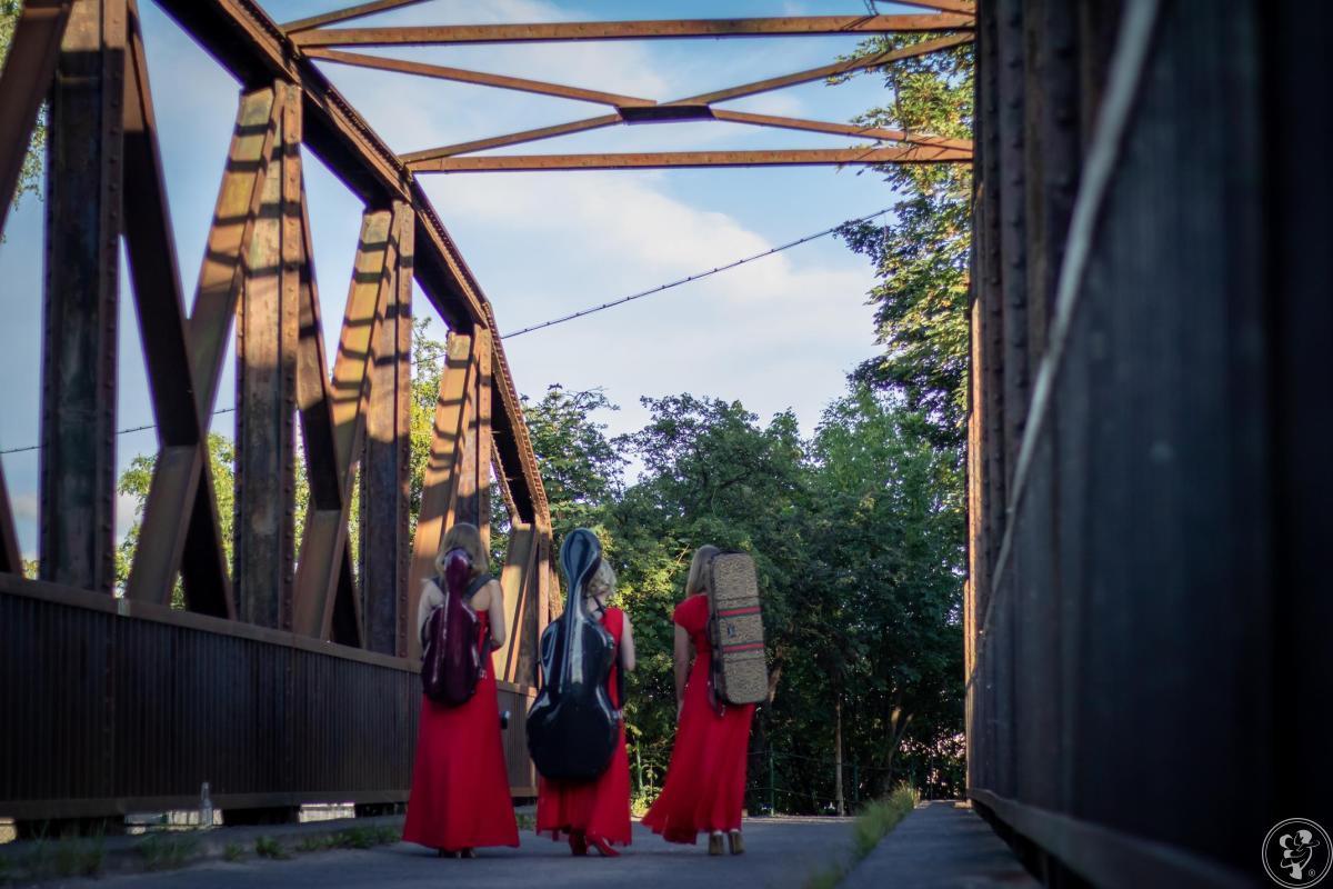 Oprawa muzyczna WOMEN STRING TRIO, Szczecin - zdjęcie 1