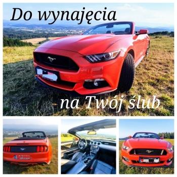 Mustang cabrio - Ty prowadzisz ! Do wynajęcia auto do ślubu, Samochód, auto do ślubu, limuzyna Kąty Wrocławskie