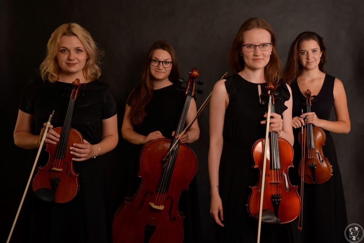 Appassionato Quartett - oprawa muzyczna uroczystości, Gdynia - zdjęcie 1