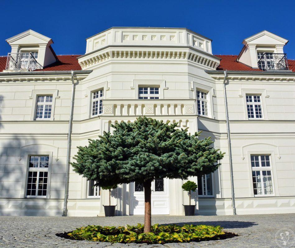 Pałac na Opieszynie, Września - zdjęcie 1