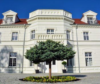 Pałac na Opieszynie, Sale weselne Września
