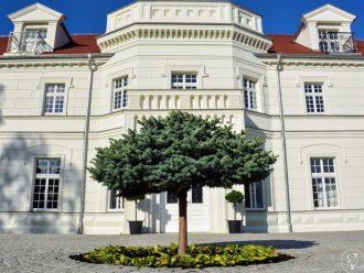 Pałac na Opieszynie,  Września