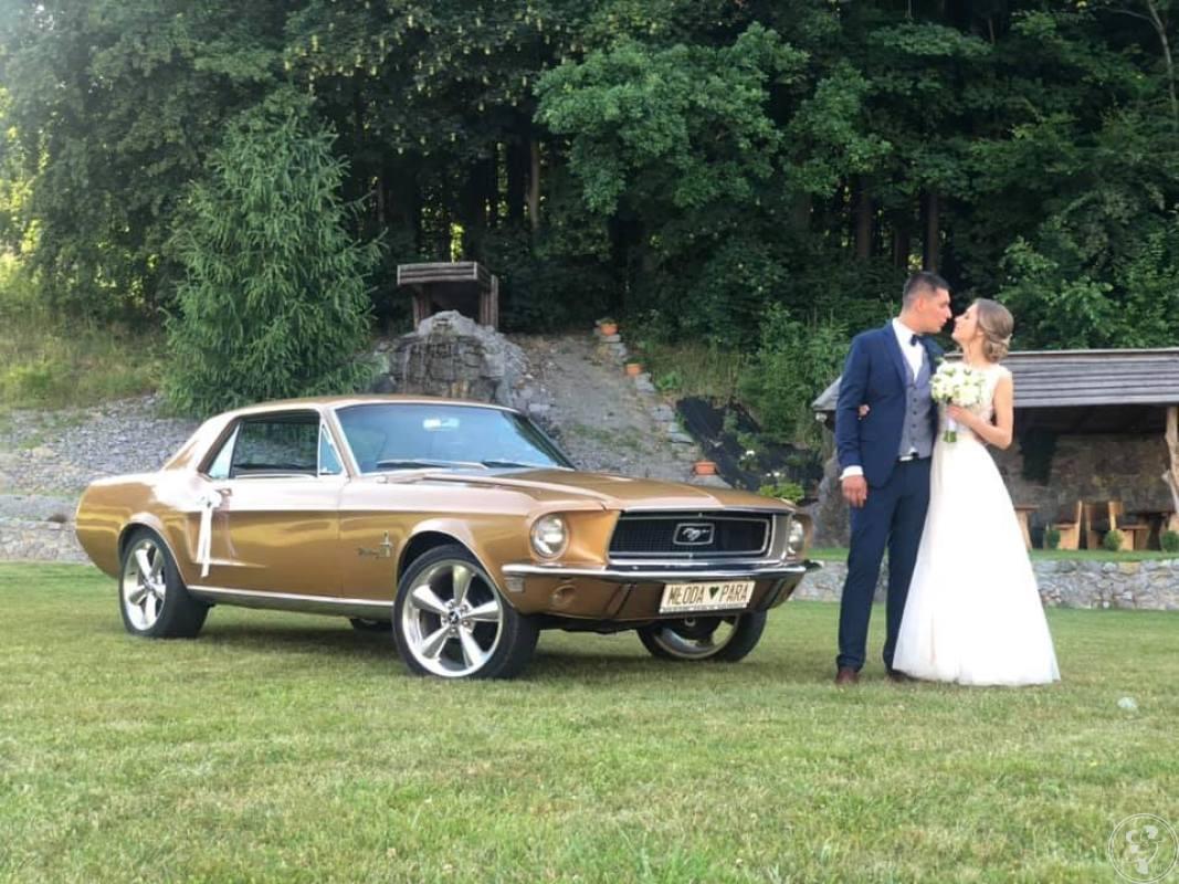 Ford Mustang, Wynajem limuzyn i samochodów zabytkowych, VIPLimo, Nowy Sącz - zdjęcie 1