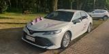 Auto do Ślubu -Toyota Camry nie  Lexus, Audi, Mercedes, BMW, Katowice - zdjęcie 4