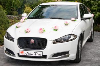 Jaguar do ślubu, samochód do ślubu, na wesele / Wolne terminy, Samochód, auto do ślubu, limuzyna Alwernia