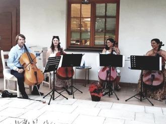 Kwartet wiolonczelowy na ślub i Twoje imprezy okolicznościowe.,  Lublin