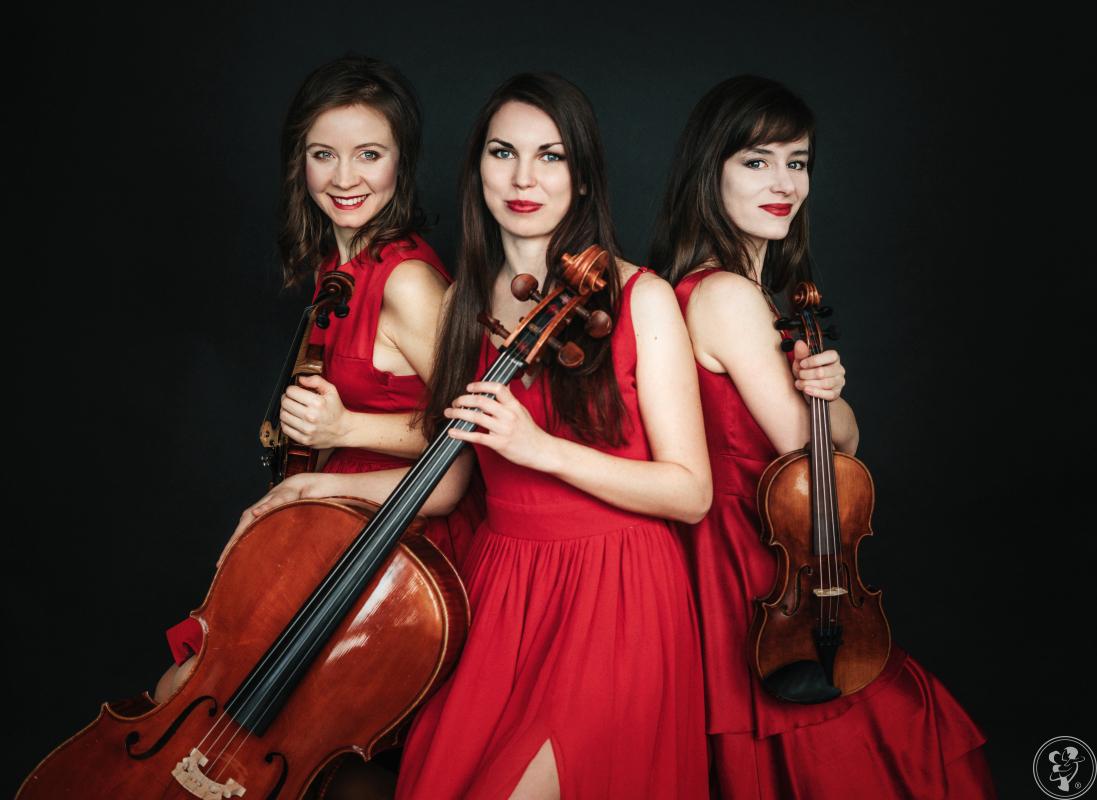 Oprawa muzyczna ślubu - trio smyczkowe (skrzypce+skrzypce+wiolonczela), Warszawa - zdjęcie 1