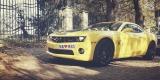 Camaro do ślubu Transformers Bumblebee auto do ślubu auto na wesele, Kielce - zdjęcie 1