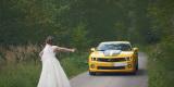 Camaro do ślubu Transformers Bumblebee auto do ślubu auto na wesele, Kielce - zdjęcie 3