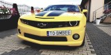 Camaro do ślubu Transformers Bumblebee auto do ślubu auto na wesele, Kielce - zdjęcie 5