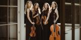 Profesjonalna Oprawa Muzyczna | skrzypce/śpiew/kwartet/organy/trąbka, Poznań - zdjęcie 5