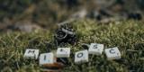 Sfilmuje - Profesjonalne Filmowanie, Kinowy Obraz 4K, Drony, Fotograf, Żyrardów - zdjęcie 4