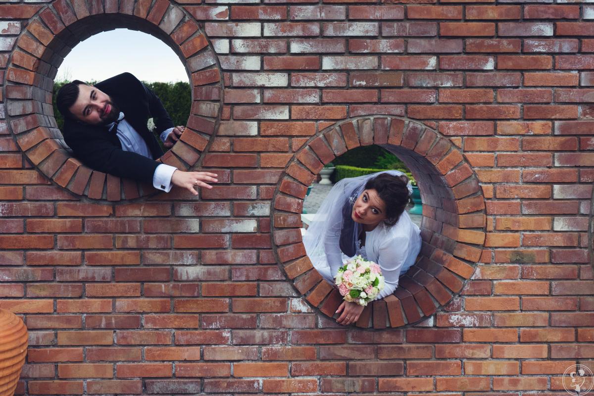 Foxgrafia - Aleksandra i Daniel Liszewscy, Pszczyna - zdjęcie 1
