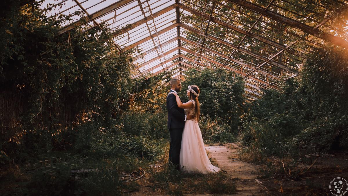 PTR Weddings, Toruń - zdjęcie 1
