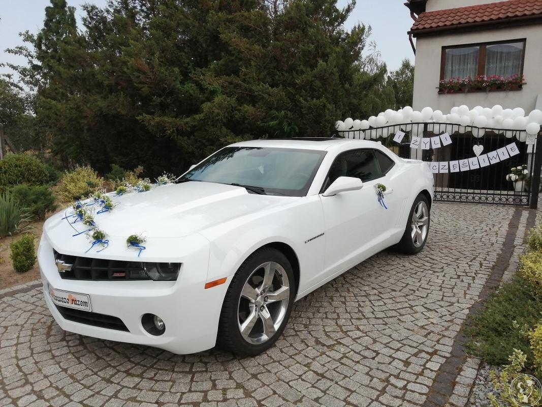Auto do Ślubu CAMARO biała PERŁA Wesele Ślub Mercedes Golf I CABRIOLET, Żary - zdjęcie 1