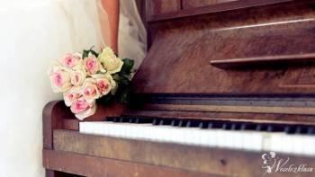 AMOROSO Oprawa Muzyczna: skrzypce, flet, śpiew, harfa, trio, gitara, Oprawa muzyczna ślubu Boguchwała