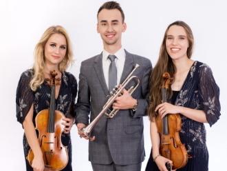 Profesjonalna oprawa muzyczna|ślub|trąbka|skrzypce|trio|duet smyczkowy,  Poznań