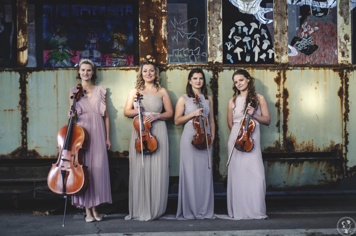 Kwartet smyczkowy UpBeat Quartet, Wrocław - zdjęcie 1