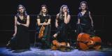 Kwartet smyczkowy UpBeat Quartet, Wrocław - zdjęcie 3