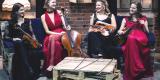 Kwartet smyczkowy UpBeat Quartet, Wrocław - zdjęcie 4