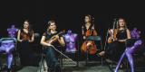Kwartet smyczkowy UpBeat Quartet, Wrocław - zdjęcie 6