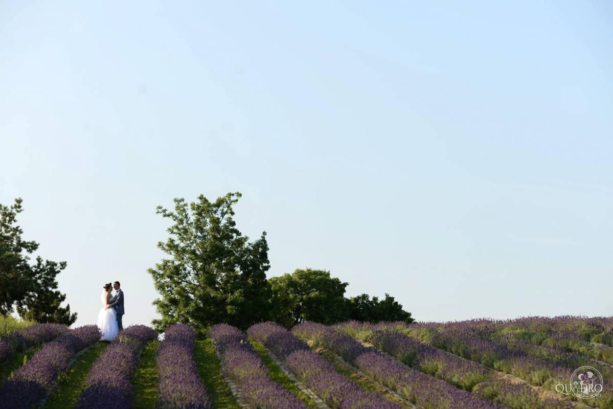 Quadro - Film Ślubny, Wejherowo - zdjęcie 1