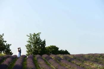 Quadro - Film Ślubny, Kamerzysta na wesele Brusy