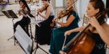 Manufaktura Muzyki -skrzypce,śpiew,kwartet smyczkowy,harfa,flet,organy, Łódź - zdjęcie 6