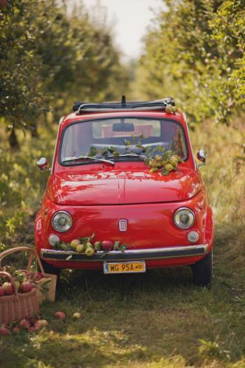 Fiat 500 z 1973r