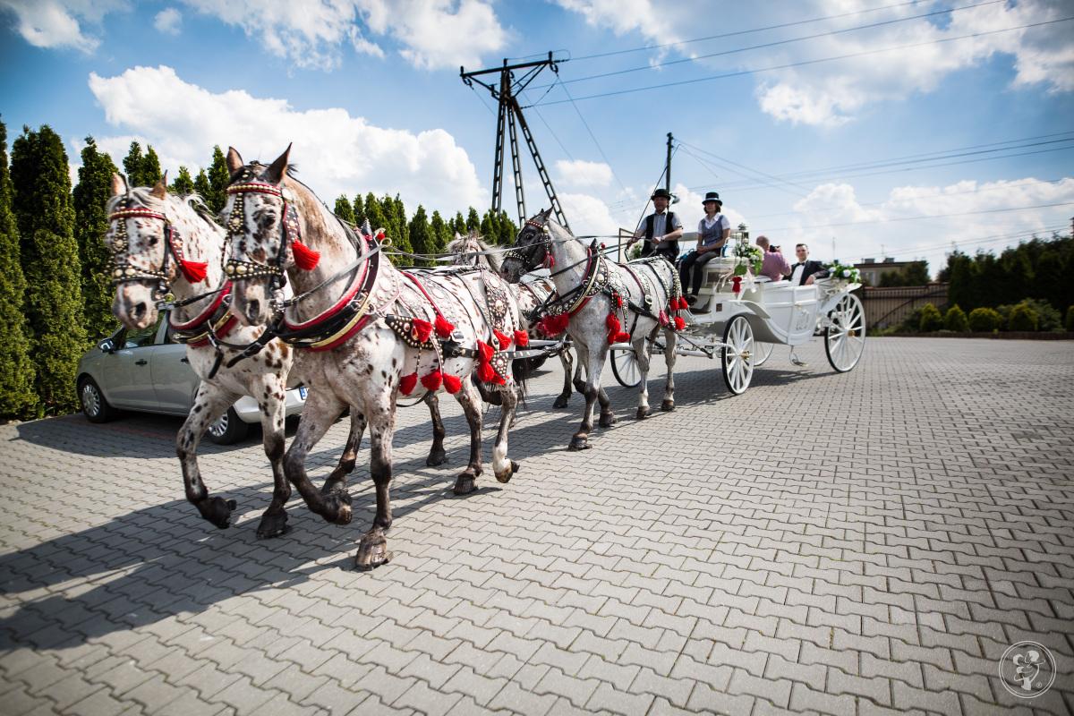 Dorożką do Ślubu, kareta., Wieliczka - zdjęcie 1