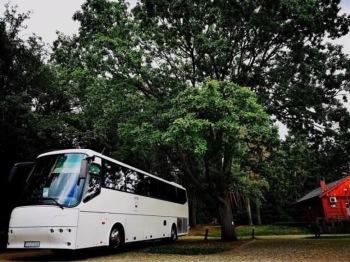 Piękne autokary i busy do Ślubu w doskonałej cenie! ORTiR, Wynajem busów Chyby