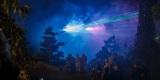 Pokaz laserowy z Firmą FIRE SHOW - pokazy laserowe i multimedialne., Lubań - zdjęcie 5