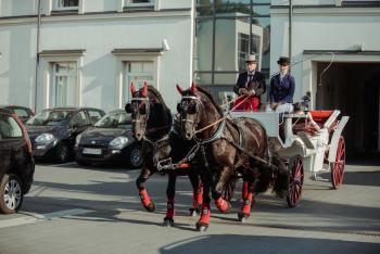 Wymarzona Podróż do ślubu! Piękne konie! Bryczka! Powóz! Kareta!, Bryczka do ślubu Warszawa
