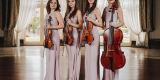Glamour String Quartet - Skomponuj ślub swoich marzeń, Katowice - zdjęcie 2