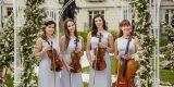 Glamour String Quartet - Skomponuj ślub swoich marzeń, Katowice - zdjęcie 3