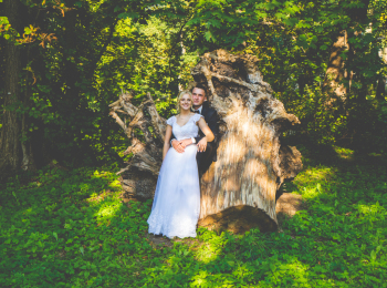 Wieczorek Studio Film&Foto; kamerzysta-fotograf, Kamerzysta na wesele Drzewica
