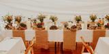 Wynajem namiotów,hal stołów ,krzeseł ,zastawa stołowDekor Group, Białystok - zdjęcie 4
