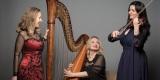Trio Lyrico HARFA KONCERTOWA ŚPIEW SKRZYPCE, Poznań - zdjęcie 2
