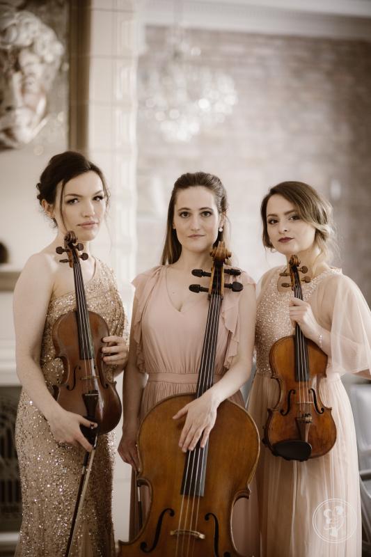 Muzyka na Ślub - Skrzypce, Śpiew, Trio Smyczkowe, Warszawa - zdjęcie 1