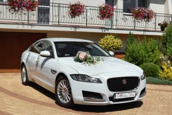 Jaguar XF - Wasz idealny samochód do ślubu - wolne terminy!, Samochód, auto do ślubu, limuzyna Jędrzejów