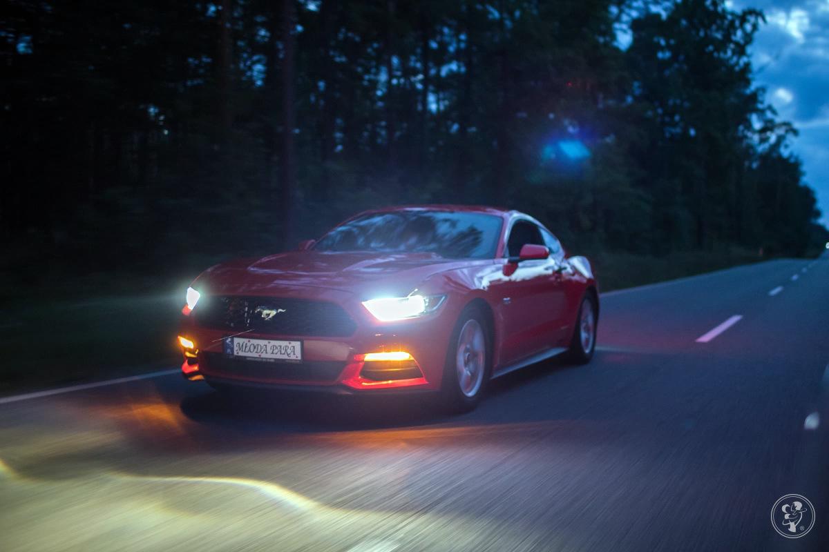 FSky - samochody do ślubu, na wesele, auto wynajem - Ford Mustang Audi, Rzeszów - zdjęcie 1