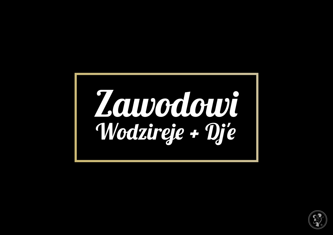 Zawodowi Wodzireje + DJ'e, Warszawa - zdjęcie 1