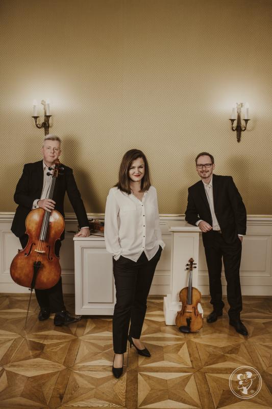 Trocken Trio - trio smyczkowe, Kraków - zdjęcie 1