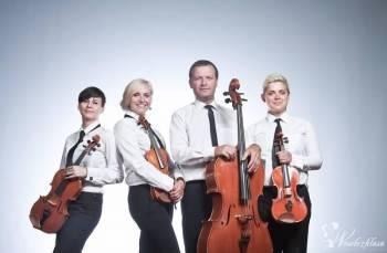 kwartet smyczkowy Prestige (harfa opcjonalnie), Oprawa muzyczna ślubu Włocławek