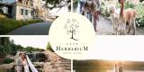 Herbarium Hotel & Spa Twój ślub jak z bajki., Gąsawa - zdjęcie 5