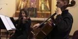 Eslavo Quartet, Gorlice - zdjęcie 5