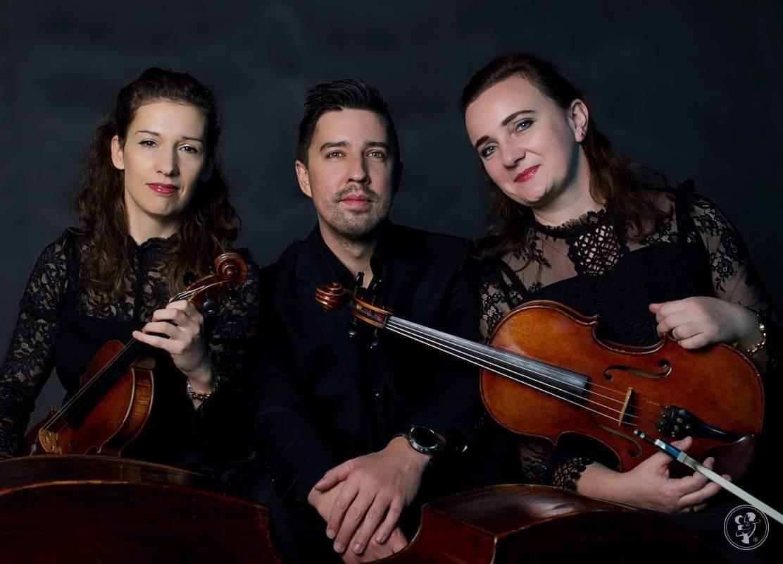 VISION TRIO -trio smyczkowe, Kraków - zdjęcie 1