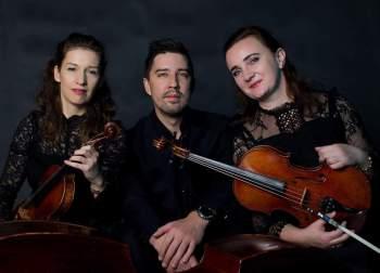VISION TRIO -trio smyczkowe, Oprawa muzyczna ślubu Żabno