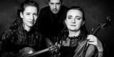 VISION TRIO -trio smyczkowe, Kraków - zdjęcie 6
